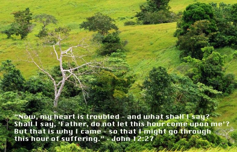 John 12-27