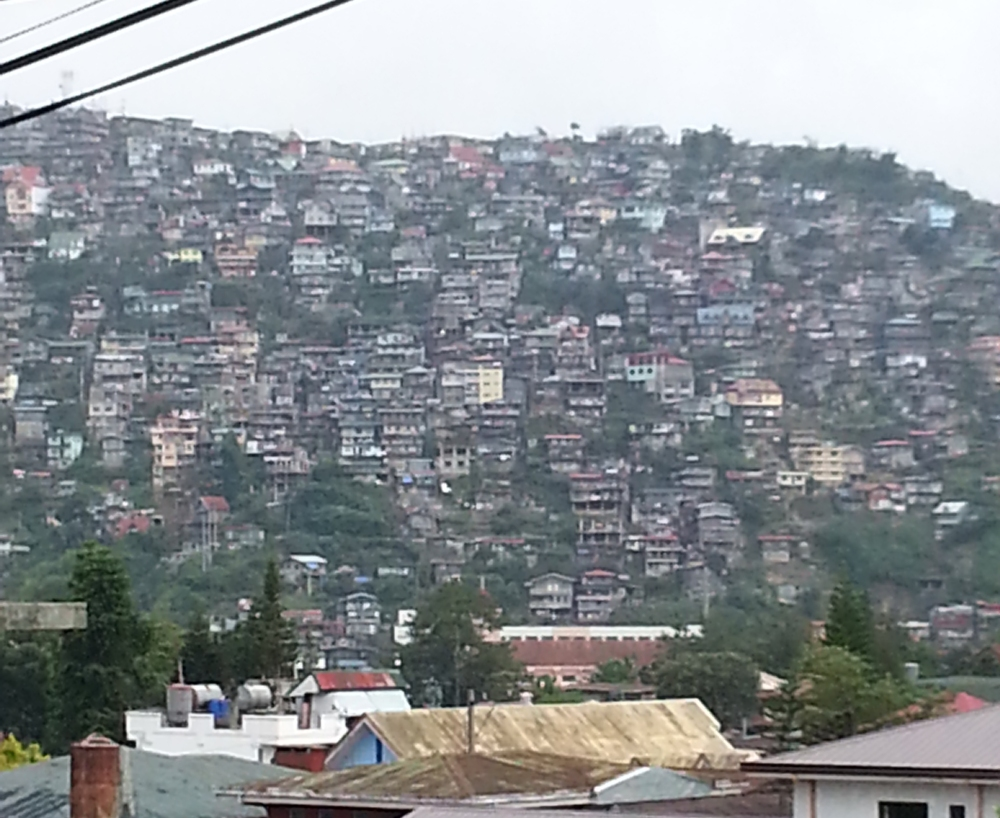 We took this photo of one of the hills (or used to be) where trees have become houses. Photo by Suzanne Cruz
